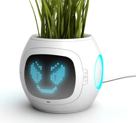 Smart Pet Plant Tells You How It's Feeling