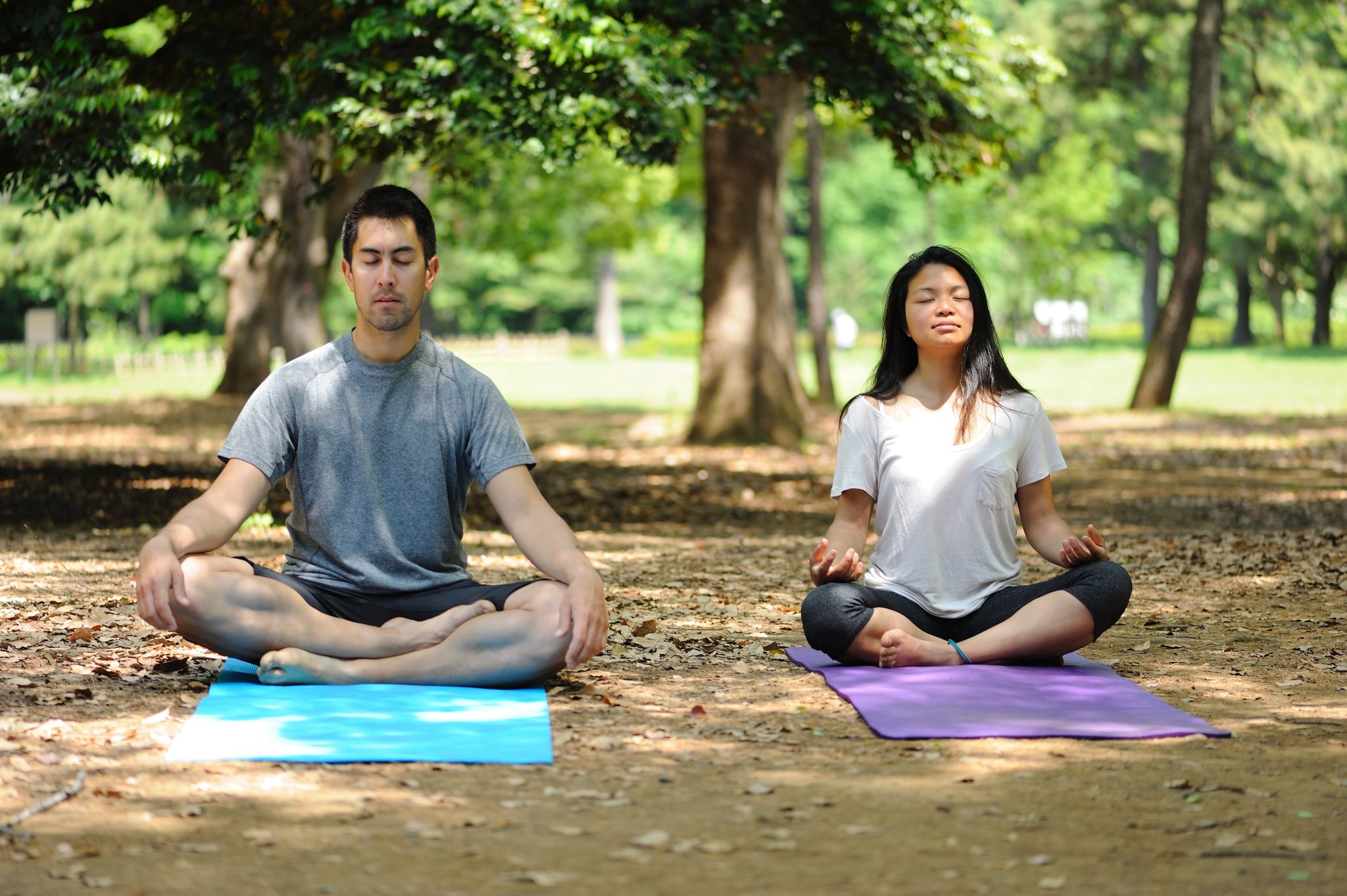 Two people meditating in the park on a sunny day.
