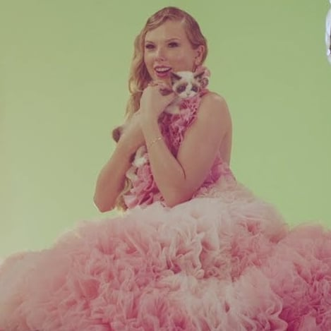 "Taylor Swift Meeting Her Cat Benjamin Button on ""Me!"" Video"