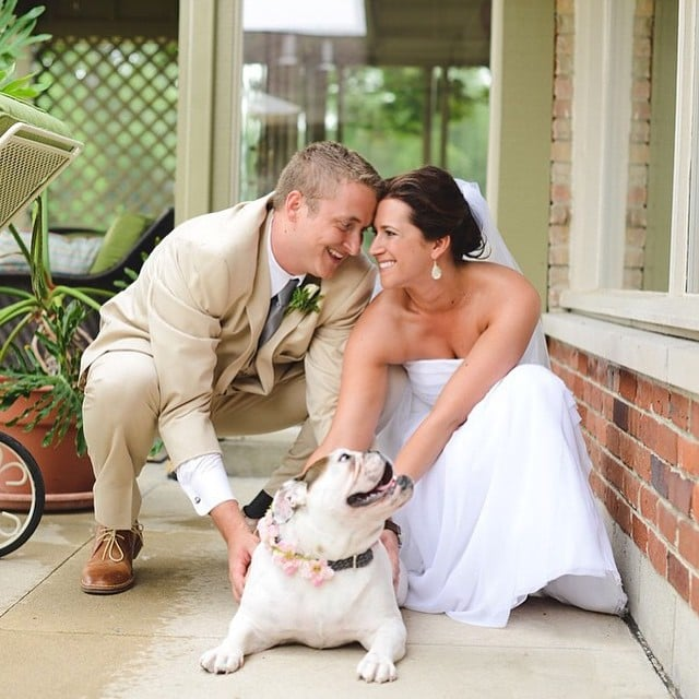 Dogs in Weddings Pictures 2015