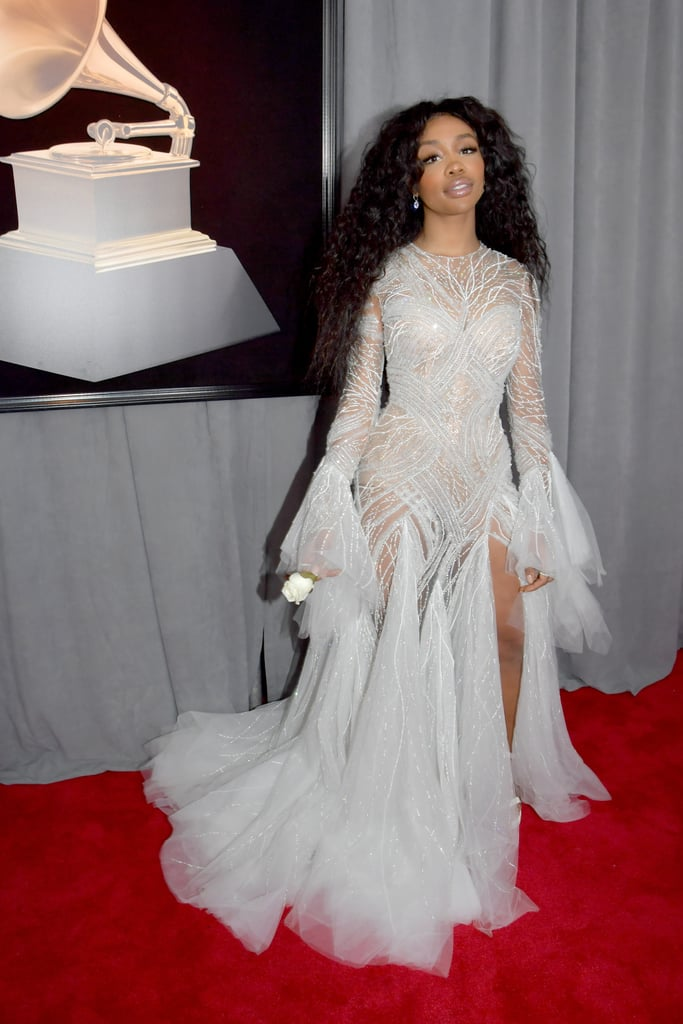 "SZA made quite the entrance when she graced the red carpet at the 2018 Grammys. The singer, who is the most nominated female artist this year, sparkled in a sheer embroidered gown and held a white rose in support of the Time's Up initiative against sexual harassment. It has been a huge year for ""The Weekend"" singer, who has made a name for herself as part of Kendrick Lamar's record label, Top Dawg Entertainment. Keep reading to see more photos of SZA slaying the red carpet."