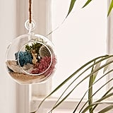Urban Outfitters DIY Hanging Geode Terrarium ($24)
