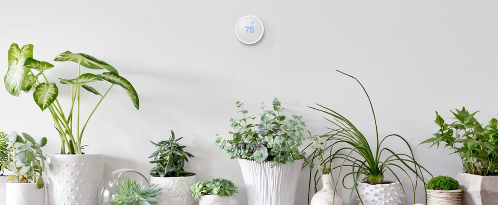 Nest's New Thermostat Is Dramatically Cheaper –and People Are Freaking Out