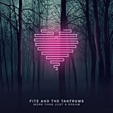 Fitz and the Tantrums, More Than Just a Dream
