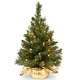 24-in. Majestic Fir Tree With Clear Lights