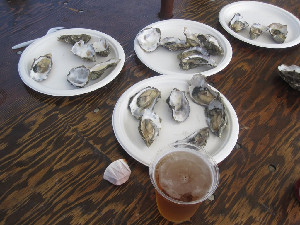 Would You Rather Eat Big or Small Oysters?