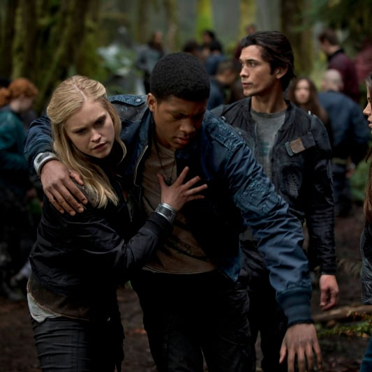 The 100 TV Show Info