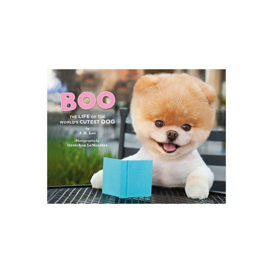 Boo the world 39 s cutest dog random house at for Cutest house in the world