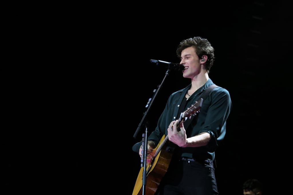 A Definitive Ranking of All of Shawn Mendes's Singles