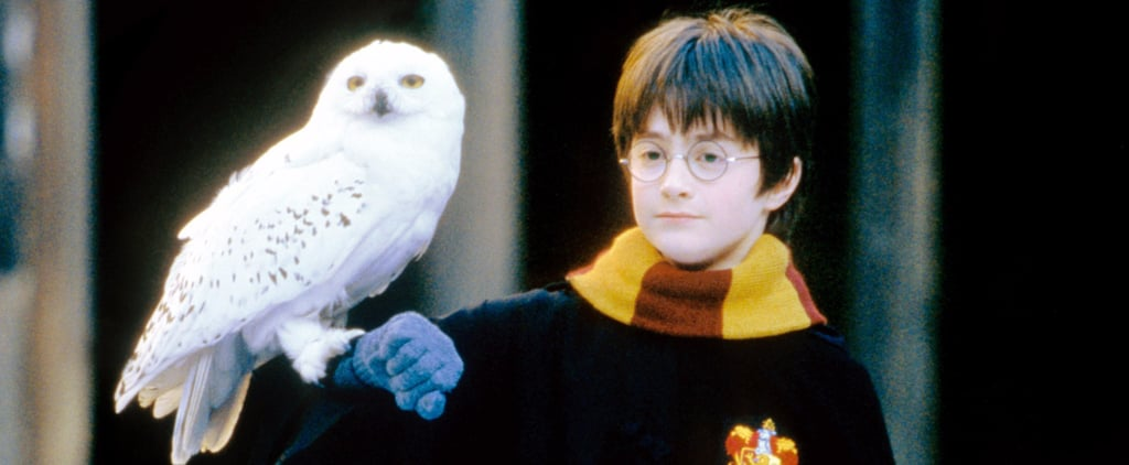 Muggles: You Have to See This Amazing Harry Potter Easter Egg on Facebook RN