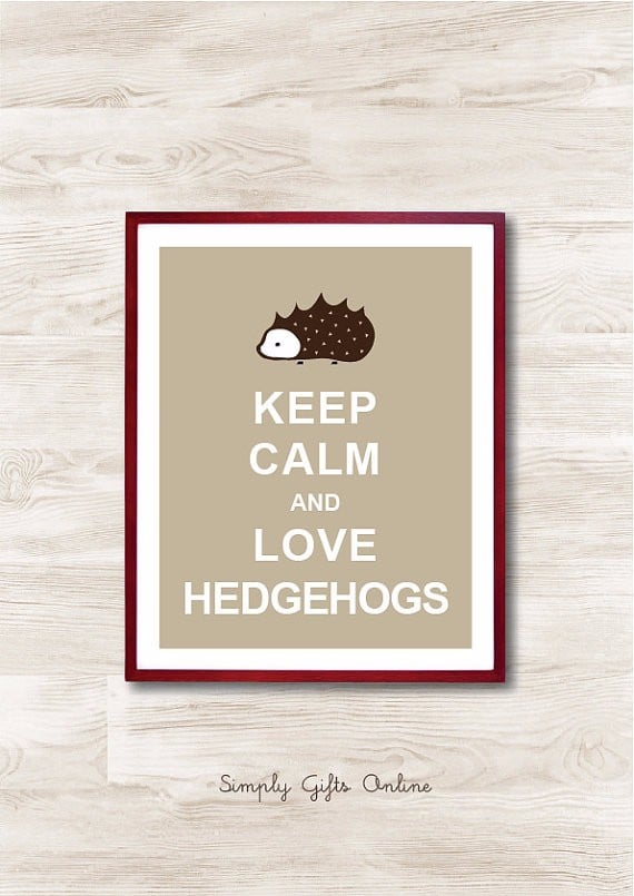 Hedgehog Gift Ideas For Christmas