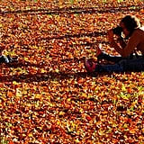 You can take great travel photos of your kids in leaves and with pumpkins.