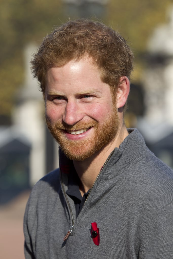 Reasons We Fell in Love With Prince Harry in 2015