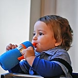 Safe Sippy 2 Straw Cup