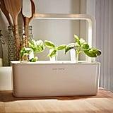 Click and Grow Smart Herb Garden Starter Kit