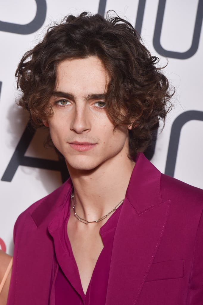 Timothée Chalamet at the Little Women Premiere in Paris