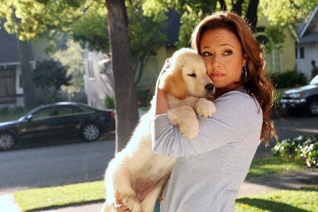 An adorable puppy and Lea Remini in Family Tools.