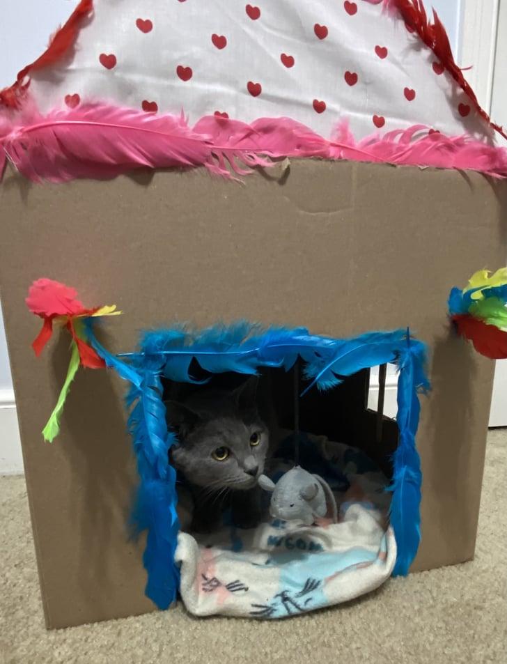 How To Make A Diy Cat Playhouse Popsugar Pets