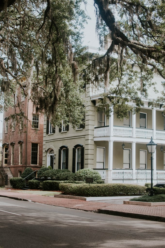 Wild and Magical in Savannah, GA