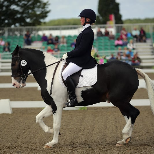 Pictures From the 2012 National Dressage Championships