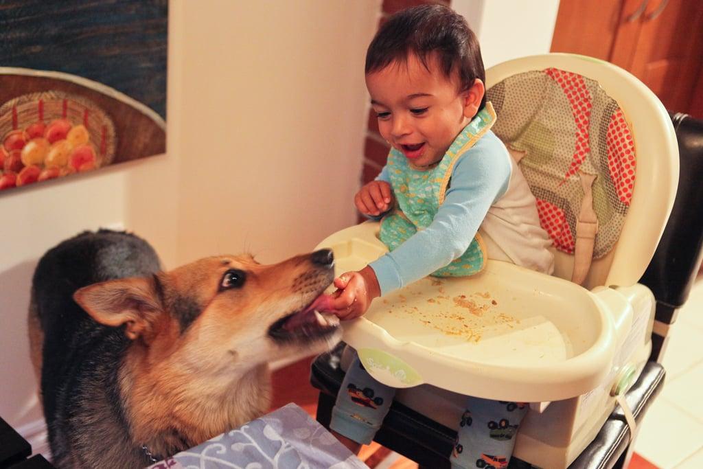 يُحدثون الفوضى عندما يأكلون.