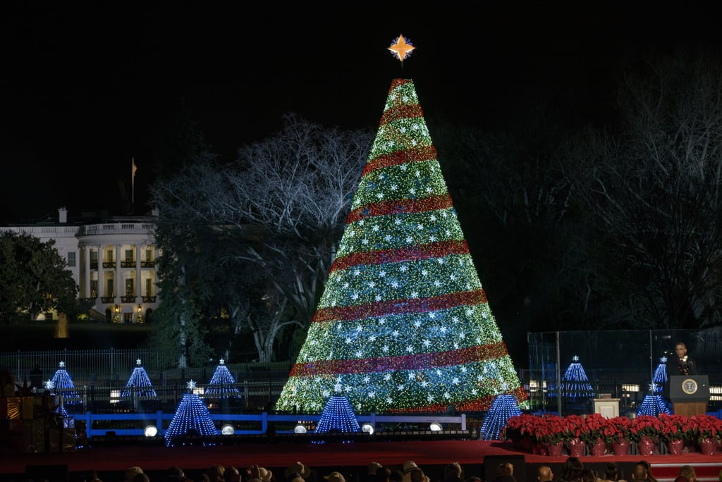 National Christmas Tree Lighting.National Christmas Tree Lighting Ceremony 2014 Pictures