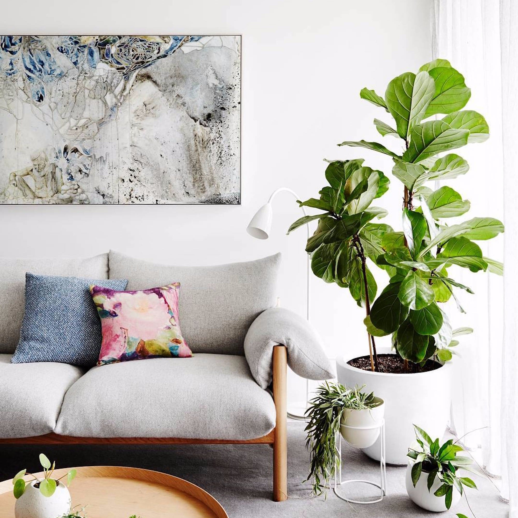 fiddle leaf fig trees at costco popsugar home