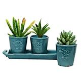 Rustic Turquoise Ceramic Succulent Planters