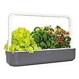 Click & Grow Smart Garden 9 Indoor Planter