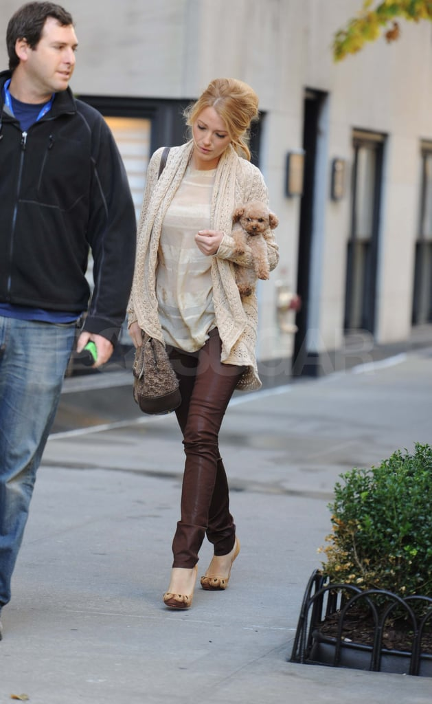 Blake Lively with her dog in NYC.