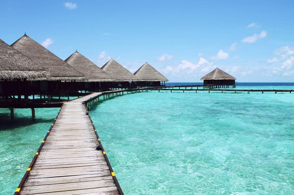 Leo (July 23 to Aug. 22): Tahiti