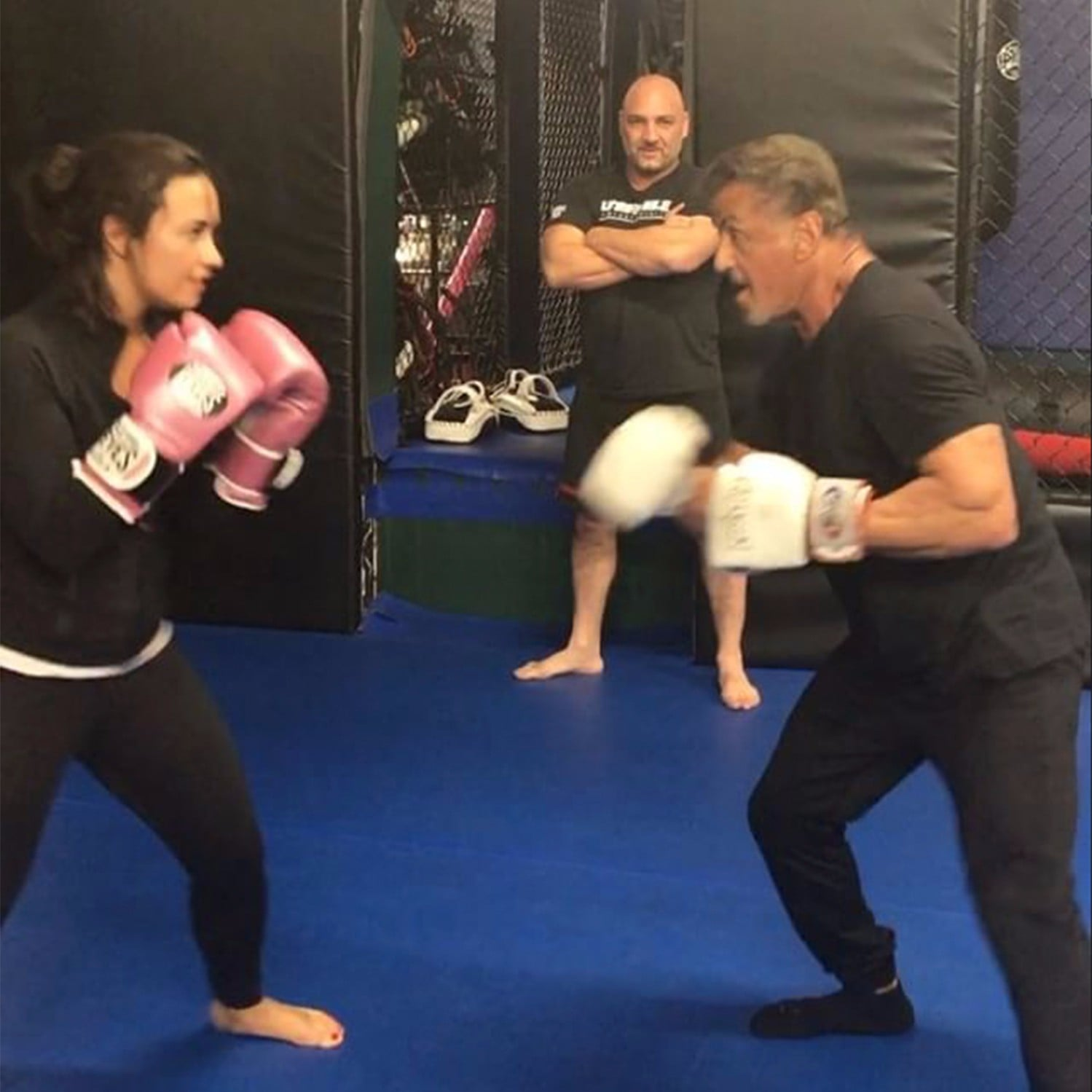 Demi Lovato Knocks Out Sylvester Stallone While Boxing Popsugar Fitness