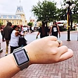 You can use an Apple Watch to speed up your PhotoPass process.