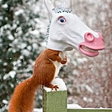 Unicorn Head Squirrel Feeder by Archie McPhee
