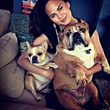 Chrissy Teigen posed with her bulldog pups. Source: Instagram user chrissyteigen