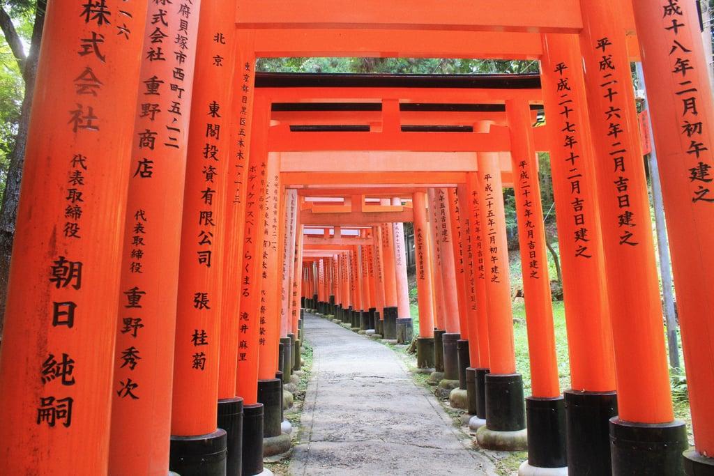 Visit the Fushimi Inari Taisha in Kyoto, Japan