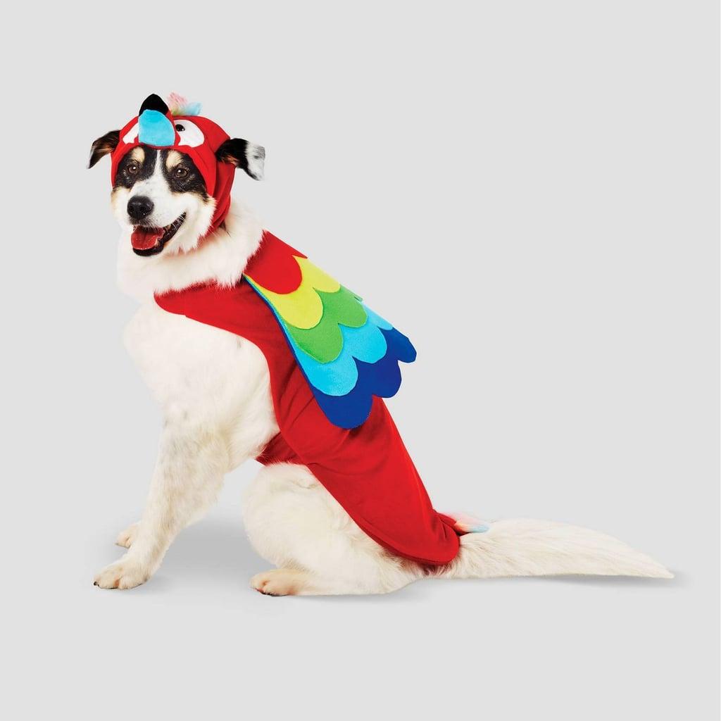 Parrot Halloween Dog Costume