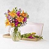 """Bloom & Wild """"The Jasmine"""" Letterbox Flowers (£25)"""