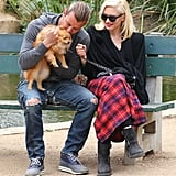 Gwen Stefani and Gavin Rossdale played with their dog on a park bench.
