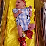 Newborn Babies Dressed in Wizard of Oz Costumes