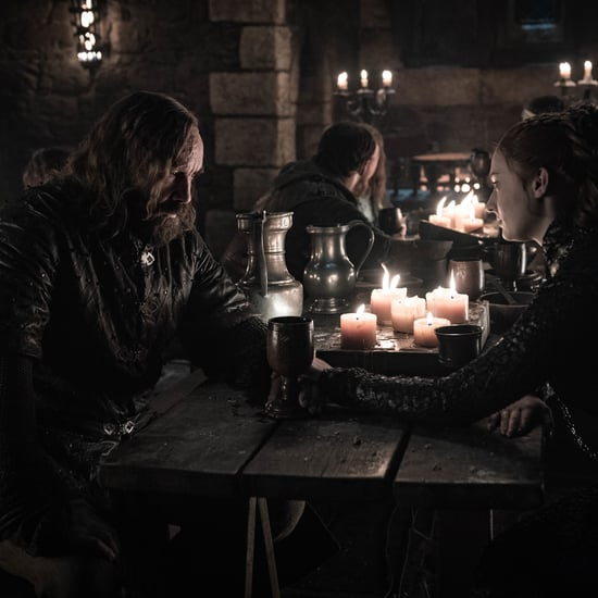 Sansa and the Hound's History on Game of Thrones