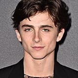 When I perish, I would prefer the cause of my death to be impalement by Timothée's jawline.