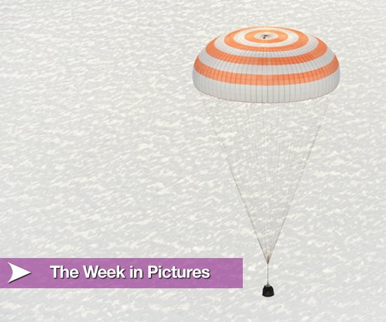 Week in Pictures 2010-03-21 06:00:48