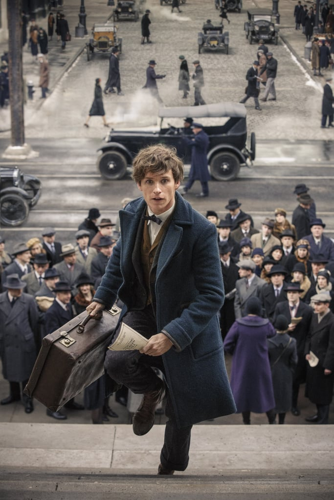 Newt Scamander From Fantastic Beasts and Where to Find Them