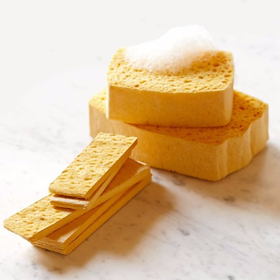 How Often Should You Replace Sponges?