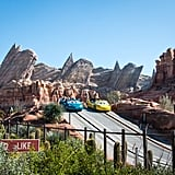 It has Radiator Springs Racers.