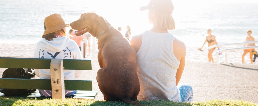 """Study Finds That Dogs Obey Women More — the Reason Will Give You a Genuine """"Aha!"""" Moment"""