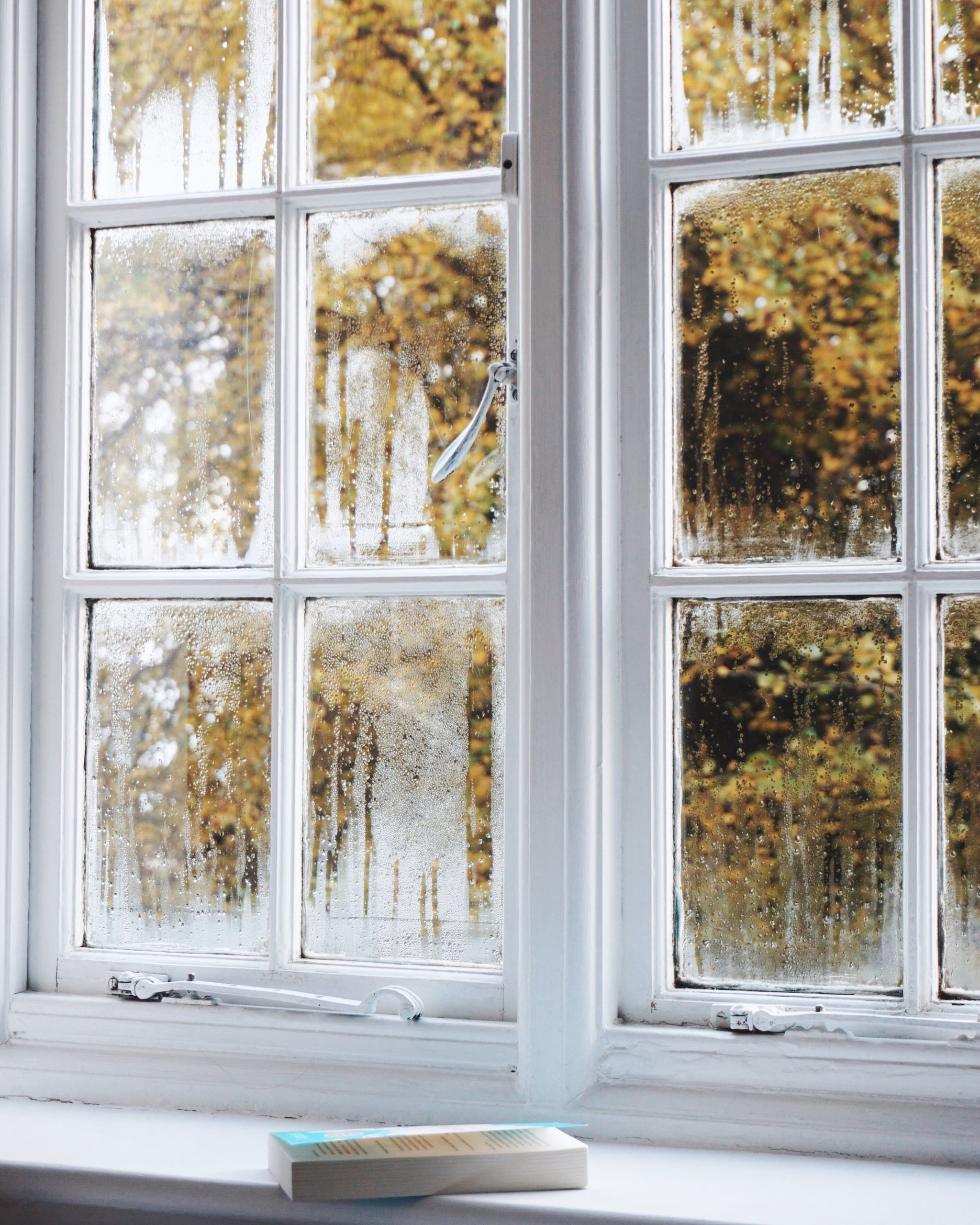 Frosted Windows Iphone Wallpaper 50 Fall Iphone Wallpapers That Ll Instantly Make You Feel Cozy Popsugar Tech Photo 15
