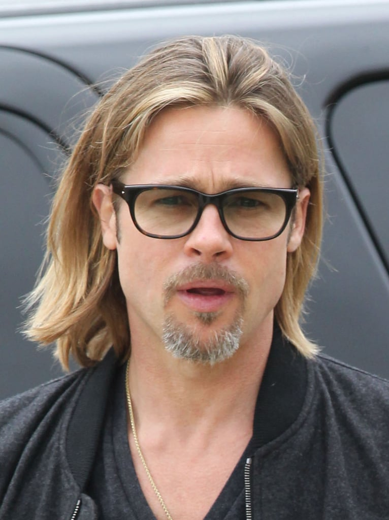 Brad PItt seems to be regrowing a long goatee.
