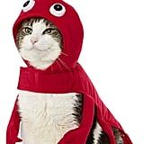 Frisco Red Lobster Cat Costume
